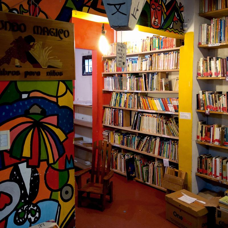 10-biblioteca-alfonsina-storni-viilla-allende-parque-literatura-poesia
